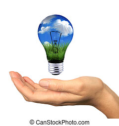 Renewable Energy is Within Reach - Hand Holding Lighbulb ...