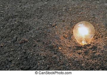 renewable energy - light bulb planted in soil