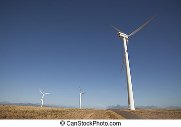 Renewable Energy - Wind turbines in a field in South Africa
