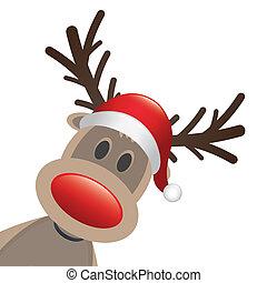 renne, rudolph, chapeau, nez, rouges
