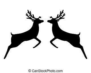 renne, silhouette, deux