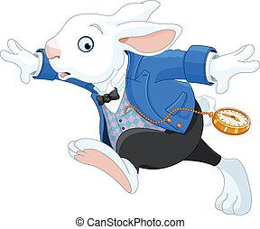 rennende , wit konijn