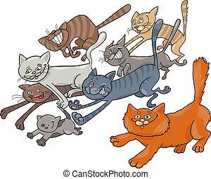 rennender , katzen