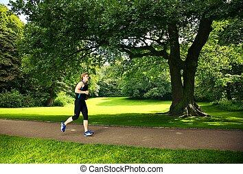rennender , park, mann
