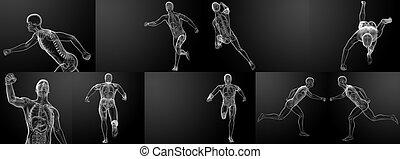 rennender , röntgenbilder, skelett, render, 3d