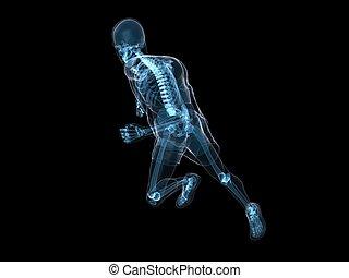 rennender , skelett