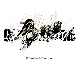 rennsport, jagdhund, grau