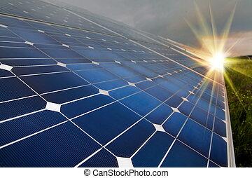 renouvelable, énergie solaire, utilisation, énergie, plante