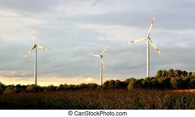 renouvelable, vert, concept, énergie