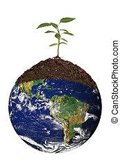 renouveler, la terre