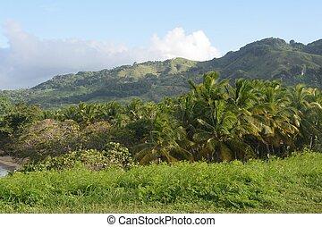 república, dominicano, paisagem