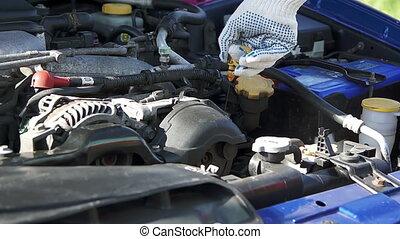 Repair man checking car engine oil