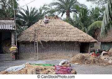 reparación, cubierto con paja, techos