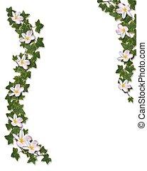 repkény, és, plumeria, floral határ, meghívás