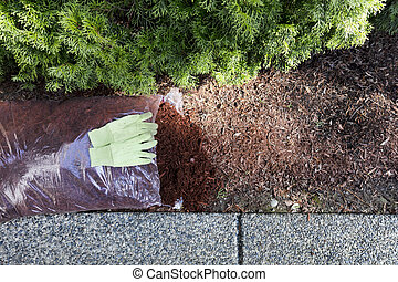 Replacing existing red bark mulch in shrubs with work gloves on top of new bag