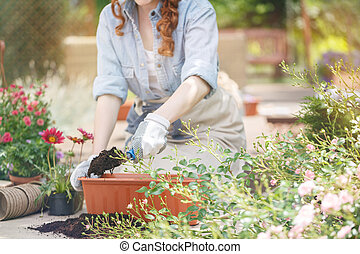 Replanting flowers in spring - Young gardener replanting...