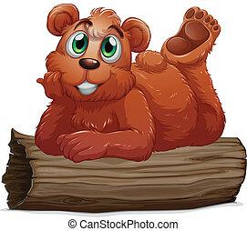 reposer, bûche, ours, au-dessus