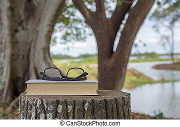 reposer, Parc, LIVRES, lunettes, banc