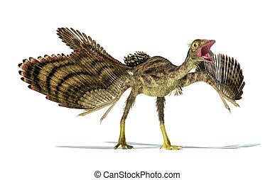 representación, photorealistic, dinosaur., archaeopteryx