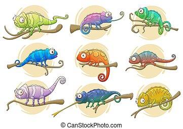 reptile, icônes, animaux, clair, caméléon, lézard