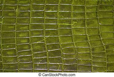 Reptile skin - Green reptile skin