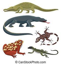 reptiloid, reptil, bunte, raubtier, abbildung, animals., vektor, amphibie, reptilien, fauna