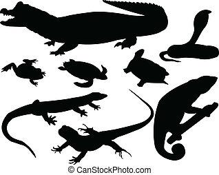 reptils, vetorial, -