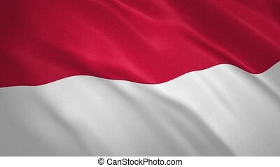 Republic of Indonesia . Waving Flag Video Background