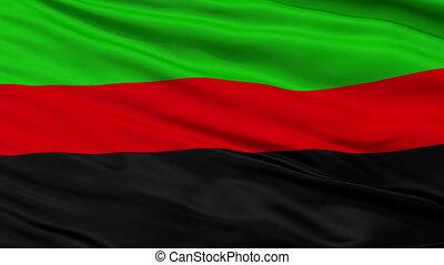 Republic of New Afrika Micronation Close Up Waving Flag