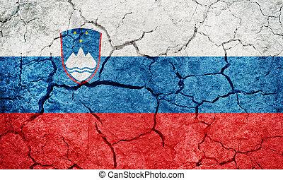 Republic of Slovenia flag