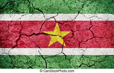 Republic of Suriname flag