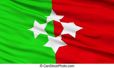 Republic of Talossa Micronation Close Up Waving Flag