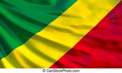 Republic of the Congo flag. 3d illustration