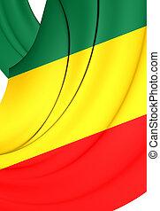 Republic of the Congo Flag. Close Up.