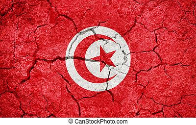 Republic of Tunisia flag