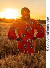 reputacja, kobieta, zbiory, tradycyjny, pole, zachód słońca, afrykanin, albo, wschód słońca, odzież