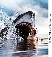requin, attaque