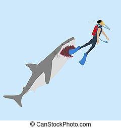 requin, attaque, illustration