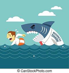 requin, business