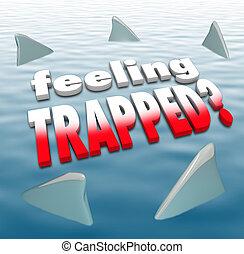 requin, piégé, nageoires, océan, entourer, mots, sentiment
