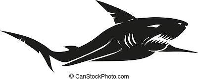 requin, vendange, noir