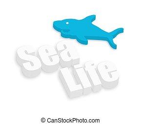 requin, vie mer, fish