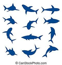 requins, bleu, ensemble, illustration., grand, vecteur, silhouettes.