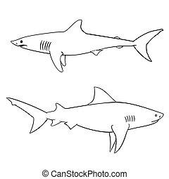 requins, enfants, livre coloration