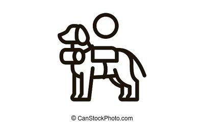 rescue dog Icon Animation