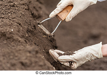 Close-up of a young researcher technician woman hands in greenhouse, in uniform, holding soil . Bio food production.