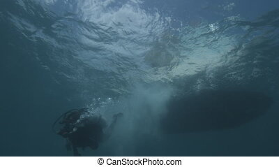 Researchers dove underwater - An underwater shot of a diver...