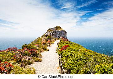 reserva de naturaleza de punto de capa, sudáfrica