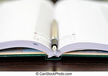 reservoarpenna, dagbok
