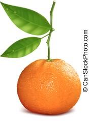 resh, mandarino